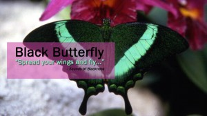 black-butterfly-sounds-of-blackness